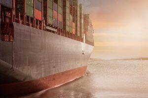 Obowiązki importera